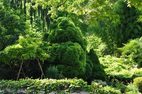 Moulin-de-la-Souloire-juillet-2012-0277--Copier-